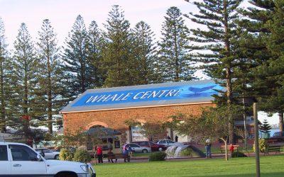 SA Whale Centre